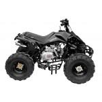 GMX The Beast Black 125cc SPORTS Quad Bike
