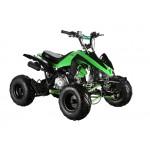 GMX The Beast Green 110cc SPORTS Quad Bike
