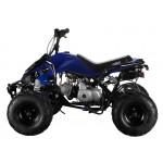 GMX The Beast Blue 110cc SPORTS Quad Bike