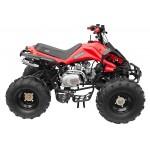 GMX The Beast Red 125cc SPORTS Quad Bike