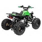 GMX The Beast Green 125cc SPORTS Quad Bike