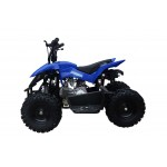 GMX Blue 60cc 4 stroke Chaser Quad Bike