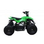 GMX Green 60cc 4 stroke Chaser Quad Bike