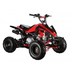 GMX The Beast Red 110cc SPORTS Quad Bike