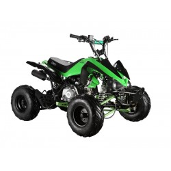 GMX The Beast Green 110cc SPORTS Quad Bike
