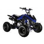 GMX The Beast Blue 110cc SPORTS Quad Bike