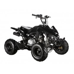 GMX The Beast Black 110cc Sports Quad Bike