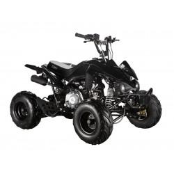 GMX The Beast Black 110cc SPORTS Quad Bike