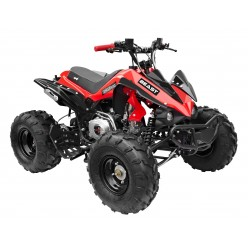 GMX The Beast Red 125cc SPORTS Quad Bike