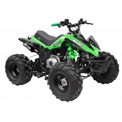 GMX The Beast Green 125cc SPORTS Quad Bike