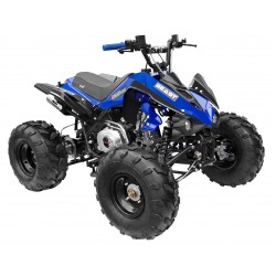GMX The Beast Blue 125cc SPORTS Quad Bike